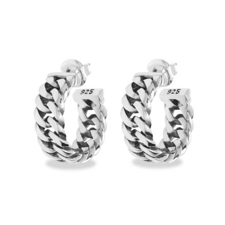 3671-Chain-Earring-Silver_432-one_Front_8718997005091.jpg
